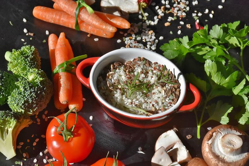 Dieta paleo pros e contras