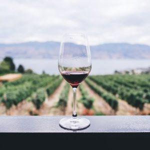 Vinho! – Conheça as regiões vinícolas portuguesas